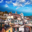 Quaint Village of Vernazza, Cinque Terre — Stock Photo