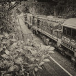 CAIRNS, AUSTRALIA - JUL 22: Famous Kuranda-Cairns train on  July — Stock Photo