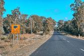 Cassowaries crossing danger sign on Queensland road — Stock Photo