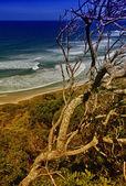 Beautiful scenario of Byron Bay Sea on a sunny winter day — Stock Photo