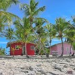 Caribbean Beach with quintessential colorful homes — Stock Photo #30164023