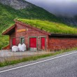 Stock Photo: Beautiful scenario of Norway countryside in summer season