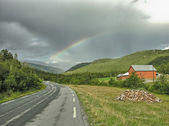 Beautiful scenario of Norway countryside in summer season — Stock Photo