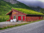 Beautiful scenario of Norway countryside in summer season — Stock Photo