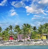 カリブ海の島 - 美しい夕暮れの景色のカラフルな小屋 — ストック写真