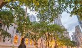 第五大道和公共图书馆在曼哈顿日落时 — 图库照片