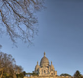 Paris. Cathedral of Sacred Heart in winter — Stock Photo