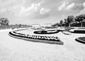 Vienna, Austria - Schoenbrunn Gardens flowers shapes, a UNESCO — Stock Photo