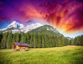 Alpin Hut with meadows, trees and mountain peaks - Summer colors — Stock Photo