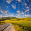 Stock Photo: Tuscan meadows in Spring. Wonderful sunset colors, Italy