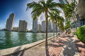 Beautiful cityscape of Miami near the ocean — Stock Photo