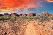 Hermosos colores y el paisaje del desierto australiano. — Foto de Stock