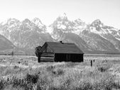 Landscape and Mountains of Grand Teton National Park — Stock Photo