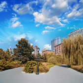 New York City, Battery Park area. Beautiful view of Trees and Sk — Stock Photo