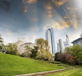 Beautiful city buildings from a green park — Stock Photo