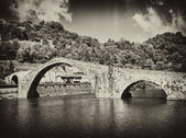 Devils Bridge in Lucca during Spring Season — Stock Photo