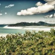 Wonderful sea and forest of Queensland. — Stock Photo