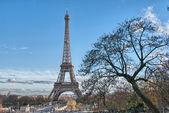 Paris. belle vue sur la tour eiffel en hiver. la tour eiffel — Photo