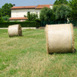 Beautiful golden hay bales with field as background - Tuscany — Stock Photo