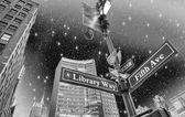 Biblioteka sposób i 5th avenue ulicy znak w nowym jorku — Zdjęcie stockowe