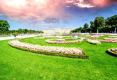 Vienna, Austria - Schoenbrunn Gardens flowers shapes — Stock Photo