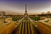 Beautiful view of Eiffel Tower with vegetation — Stockfoto