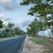 Stock Photo: AustraliCountryside Road - Mission Beach, Queensland
