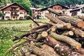 Timber with mountain landscape — Foto Stock