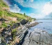 Rocks and vegetation over the ocean — Stock Photo
