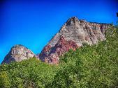 Zion National Park - USA — Stock Photo