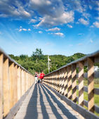 Walkway in countryside park — Stock Photo