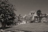 Meksika'da bir tulum arkeolojik kalıntılar — Stok fotoğraf