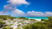 Beautiful seascape of caribbean island — Stock Photo