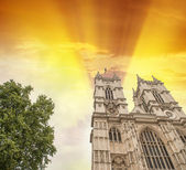 The Westminster Abbey — Stock Photo