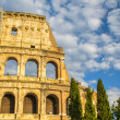 Architectural detail of Colosseum — Stock Photo #48699949