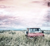 Abandoned truck on a meadow — Foto Stock