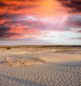 Spectacular sunset over the desert. Vertical composition. — Stock Photo
