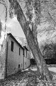 Fonti del Clitunno in Umbria, Italy — Foto Stock