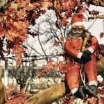 Christmas Decorations in Paris — Stock Photo #8807518