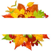 Autumnal frame with fall leaf — Stock Vector