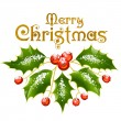 Christmas and New Year Vector holly decoration. - Stock Vector