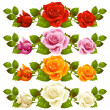 Stock Vector: Vector rose horizontal vignette isolated on background. Red, pin
