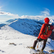 Stock Photo: Mountaineer while observing mountain panorama.