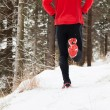 Winter trail running — Stockfoto #19178239