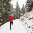 Winter trail running — Stockfoto #19181363