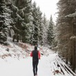 Winter trail running — Stockfoto