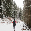 Winter trail running — ストック写真