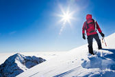 Mountaineer reaches the top of a snowy mountain in a sunny winte — Stok fotoğraf