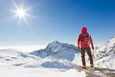 Alpinista mirando un paisaje nevado de la montaña — Foto de Stock