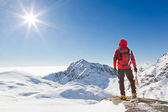 Mountaineer looking at a snowy mountain landscape — Stockfoto